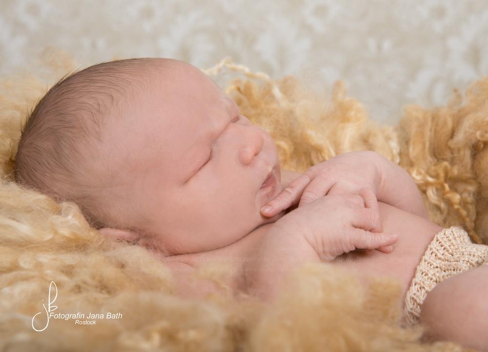 Newborn schlafend - Foto Jana Bath 2017